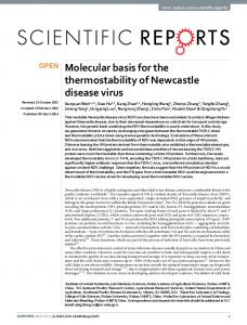 Molecular basis for the thermostability of
