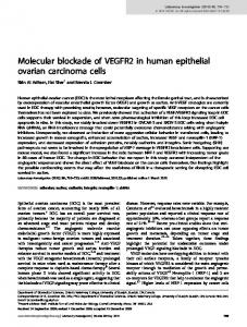 Molecular blockade of VEGFR2 in human epithelial ovarian ... - Nature