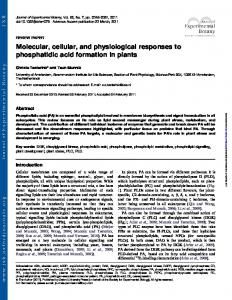 Molecular, cellular, and physiological responses to