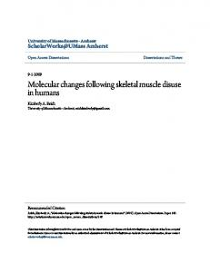 Molecular changes following skeletal muscle disuse ...