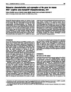 Molecular characterization and expression of the