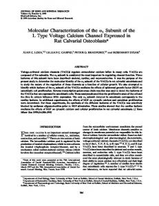 Molecular Characterization of the [alpha]1 ... - Wiley Online Library