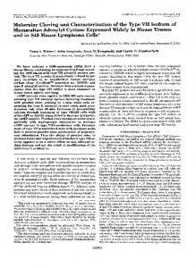 Molecular Cloning and Characterization of the Type VI1 Isoform of ...