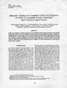 Molecular Cloning and Complete Amino Acid Sequence