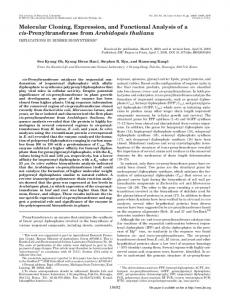 Molecular Cloning, Expression, and Functional Analysis of a cis ...