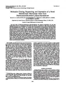 Molecular Cloning, Sequencing, and Expression of a Novel ...