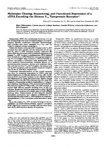 Molecular Cloning, Sequencing, and Functional Expression of a cDNA ...