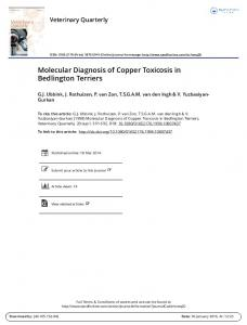 Molecular Diagnosis of Copper Toxicosis in Bedlington Terriers