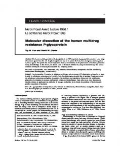 Molecular dissection of the human multidrug resistance P-glycoprotein