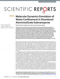 Molecular Dynamics Simulation of Water Confinement