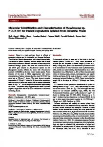 Molecular Identification and Characterization of ... - Springer Link