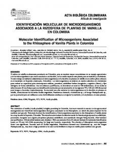 Molecular Identification of Microorganisms Associated to the ...