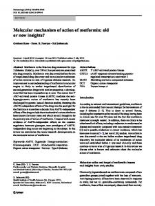 Molecular mechanism of action of metformin: old or ... - BioMedSearch