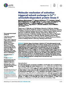 Molecular mechanism of activation- triggered