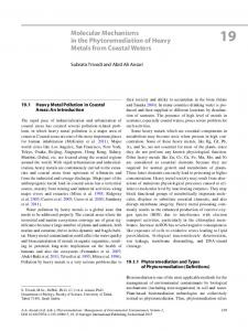 Molecular Mechanisms in the Phytoremediation of Heavy Metals from ...