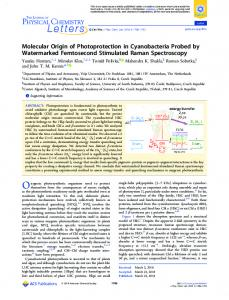Molecular Origin of Photoprotection in ... - ACS Publications