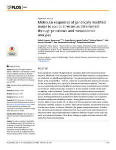 Molecular responses of genetically modified maize to abiotic ... - PLOS
