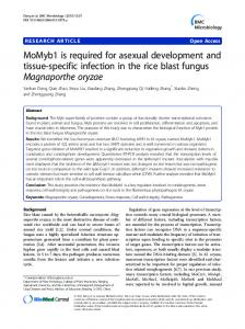 MoMyb1 is required for asexual development and tissue-specific ...