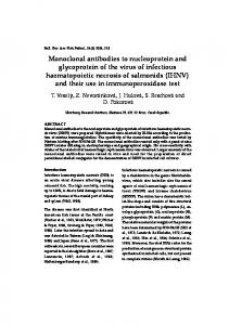 Monoclonal antibodies to nucleoprotein and glycoprotein of the virus ...