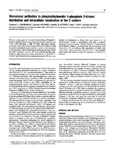 Monoclonal antibodies to phosphatidylinositol 4-phosphate 5-kinase ...
