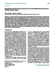 Monovalent Cationic Channel Activity in the Inner Membrane of Nuclei ...