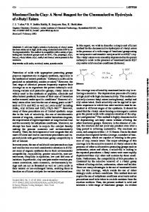 Montmorillonite Clay: A Novel Reagent for the