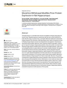 Morphine Withdrawal Modifies Prion Protein Expression in Rat ... - PLOS