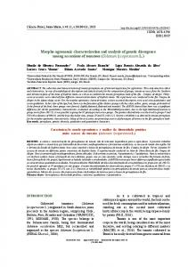 Morpho-agronomic characterization and analysis of genetic ... - SciELO