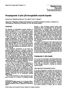 Morphogenesis of joint b2-microglobulin amyloid deposits