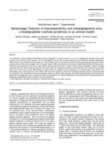 Morphologic features of biocompatibility and ... - CiteSeerX