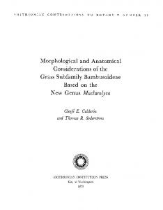 Morphological and Anatomical Considerations of the Grass ...