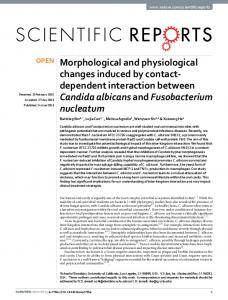 Morphological and physiological changes induced by
