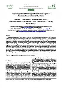 Morphological and Physiological Germination Aspects of