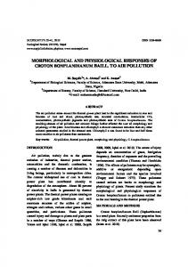 morphological and physiological responses of ... - Semantic Scholar