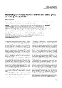 Morphological investigations on anthers and pollen grains of some ...