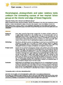 Morphological, photosynthetic and water relations