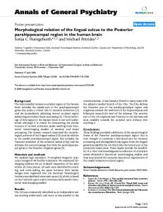 Morphological relation of the lingual sulcus to the Posterior ...