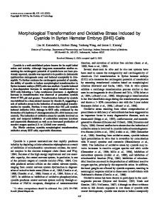 Morphological Transformation and Oxidative Stress Induced by ...