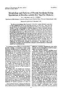 Morphology and Patterns of Protein Synthesis During Sporulation of ...