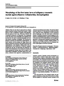 Morphology of the first instar larva of obligatory ...
