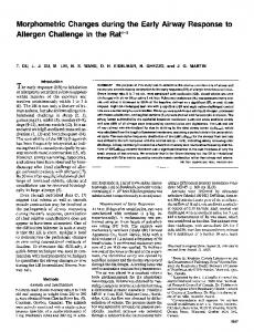 Morphometric Changes during the Early Airway ... - ATS Journals