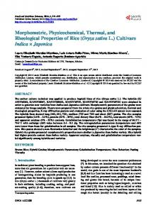 Morphometric, Physicochemical, Thermal, and Rheological Properties ...