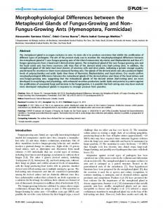 Morphophysiological Differences between the ... - ScienceOpen