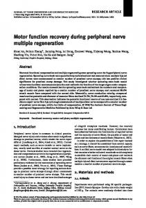 Motor function recovery during peripheral nerve ... - Wiley Online Library
