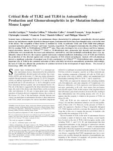 Mouse Lupus Mutation-Induced lpr Glomerulonephritis in ...
