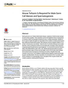 Mouse Tafazzin Is Required for Male Germ Cell ... - Semantic Scholar