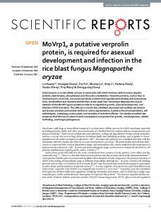 MoVrp1, a putative verprolin protein, is required for asexual ... - Nature