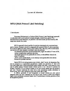 MPLS (Multi Protocol Label Switching)