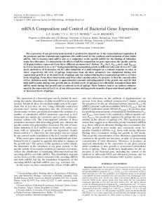 mRNA Composition and Control of Bacterial Gene Expression