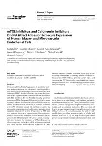 mTOR Inhibitors and Calcineurin Inhibitors Do Not Affect ... - Qucosa